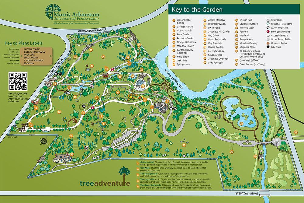 Morris Arboretum Of The University Of Pennsylvania Plan Your - Us national arboretum google maps