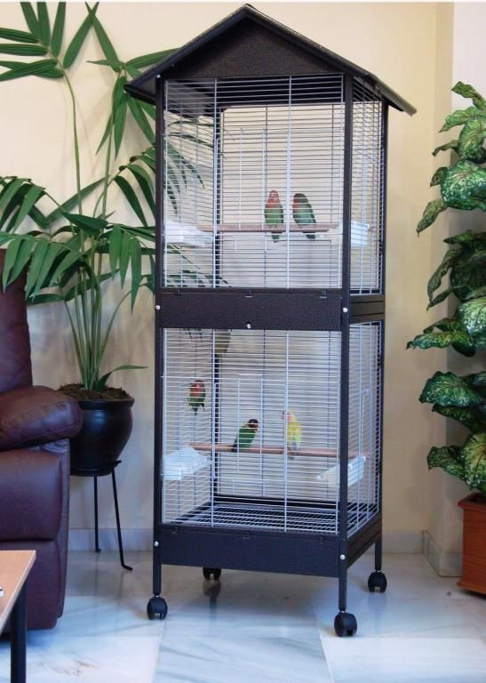 Venta Online De Jaulas Y Accesorios Para Aves Pajareras Agapornis Doble Pequeña 811 Pajareras Es Tienda On Line De Jaulas Y Accesorios Para Aves