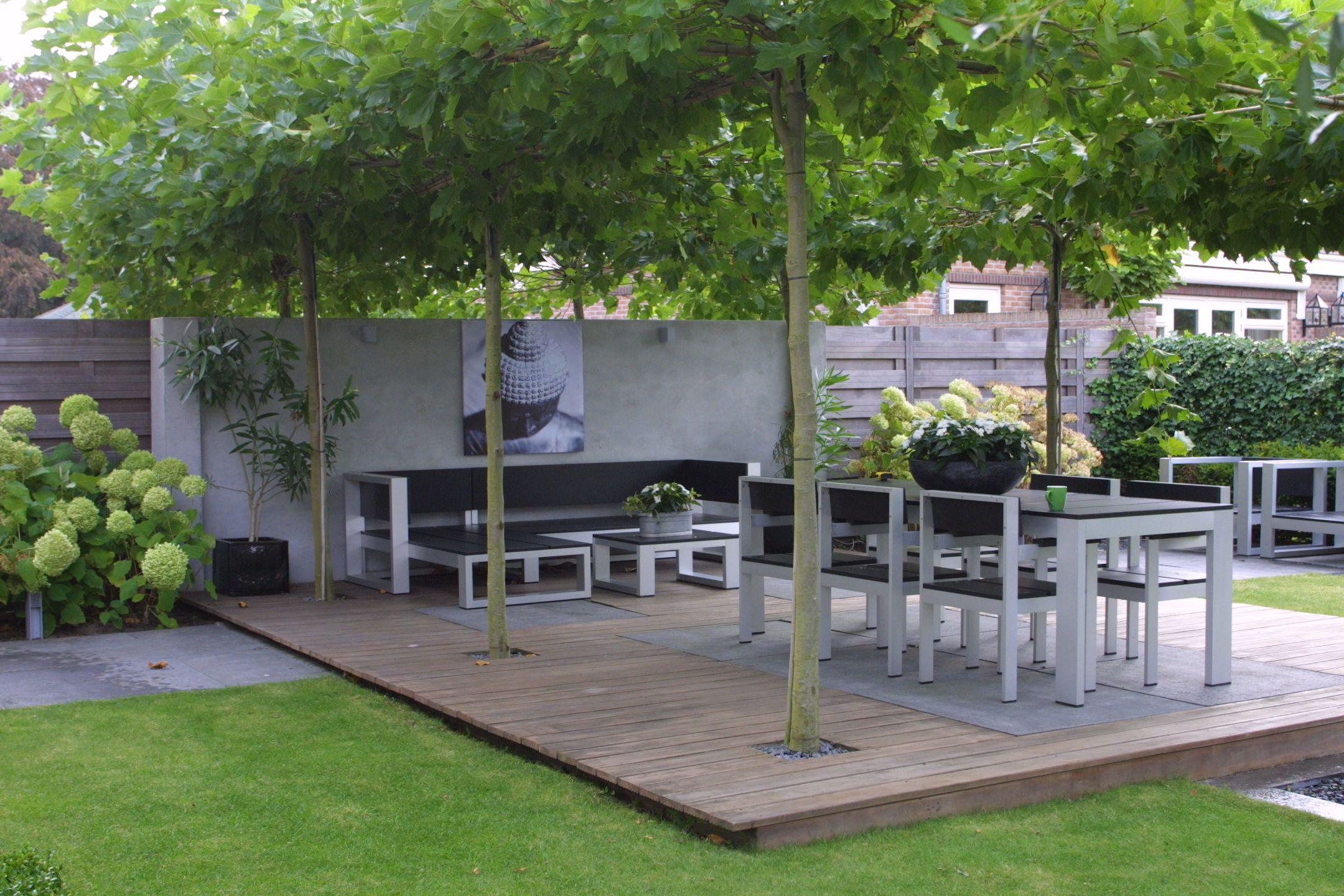 Moderne tuinen voorbeelden google search garden ideas pinterest gardens garden ideas for Tuin modern design