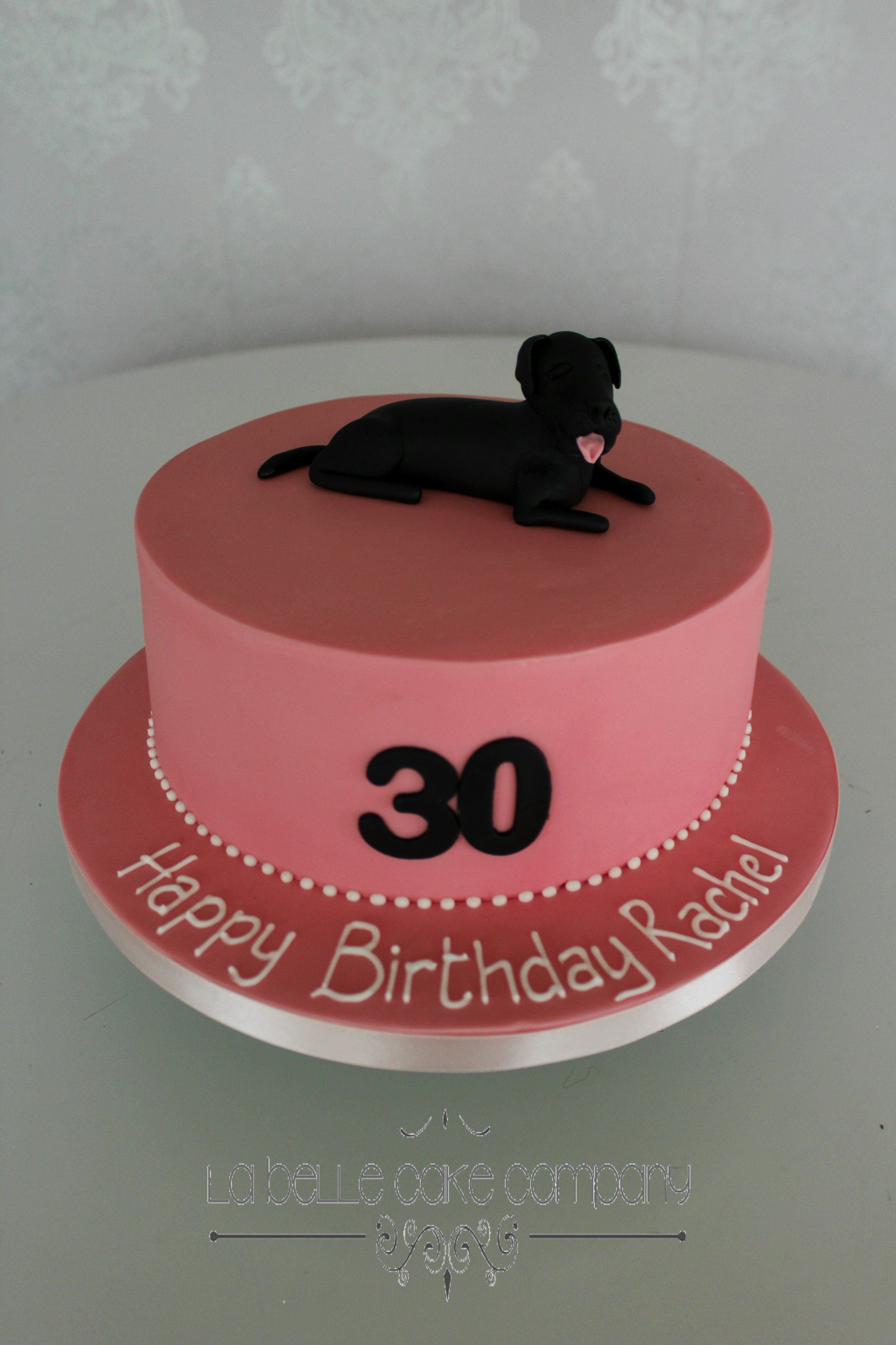 Birthday Cake With Pet Dog
