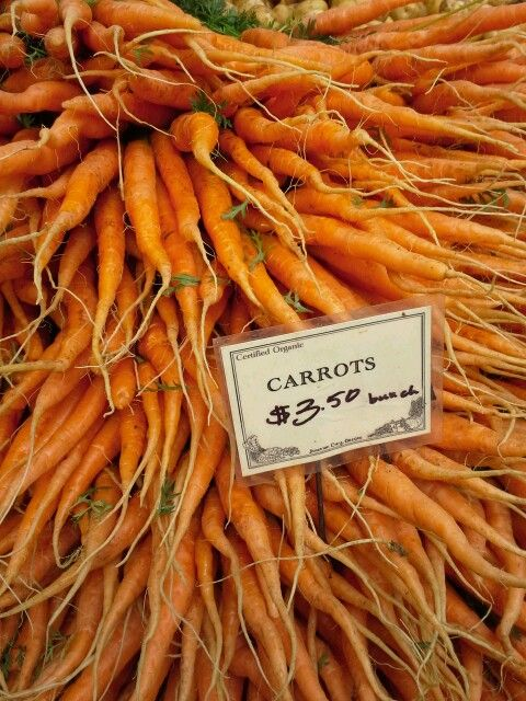 Carrots at the Portland Farmers Market