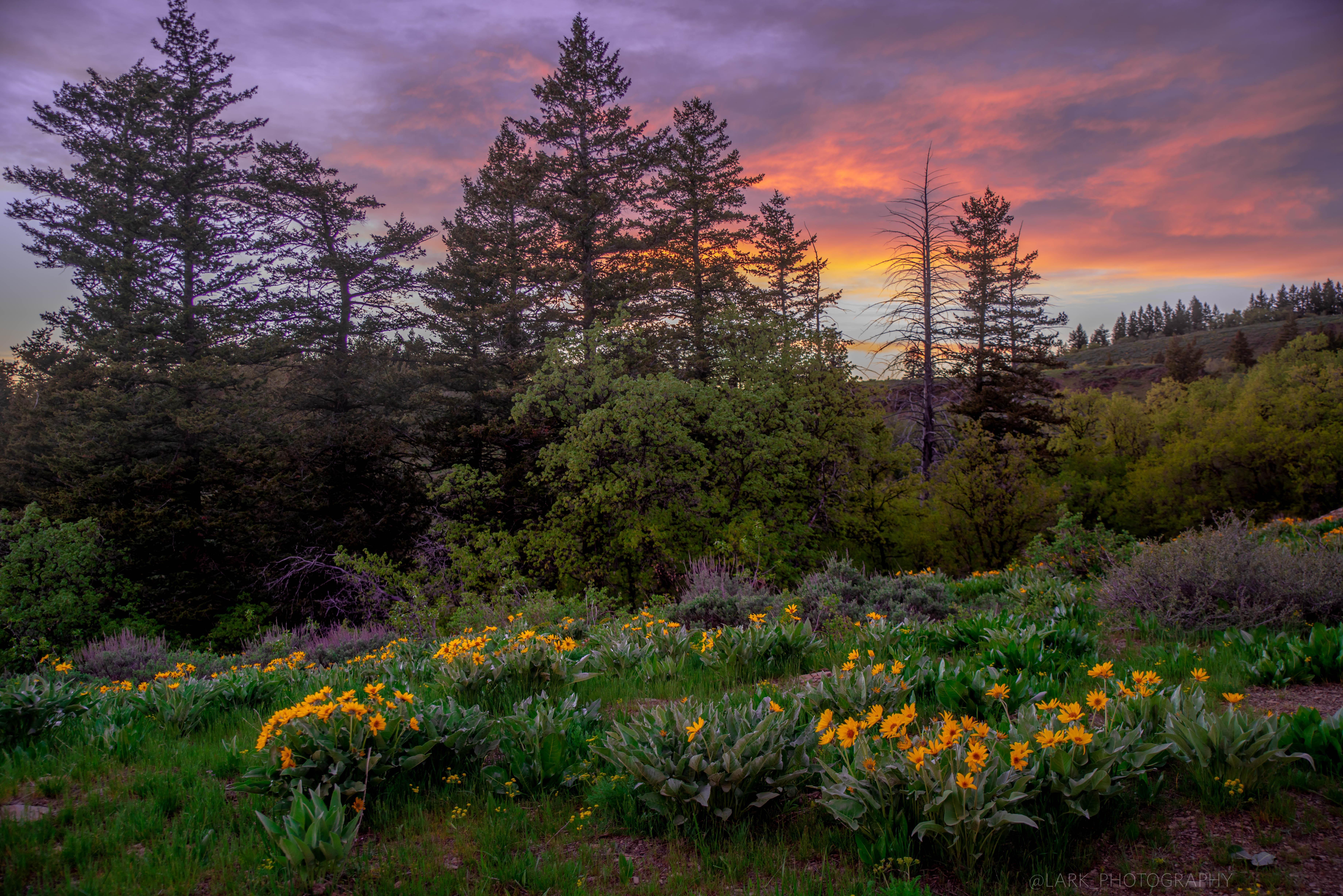 Colorful Springtime Sunset In Idaho Usa 7360 4912 Nature Photography Sunset Photos Landscape Photos