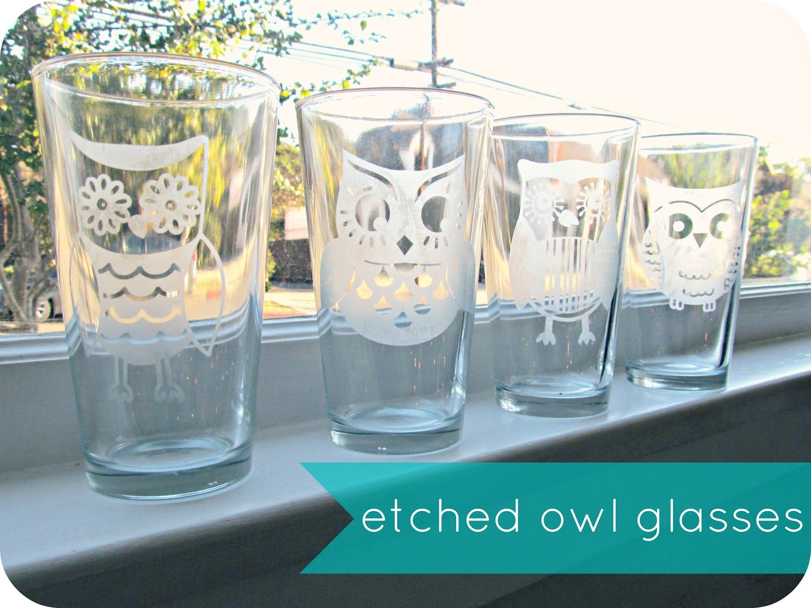 Another Reason To Get A Silhouette Homemade By Jill Etched Owl Glasses Etched Glasses Diy Glass Etching