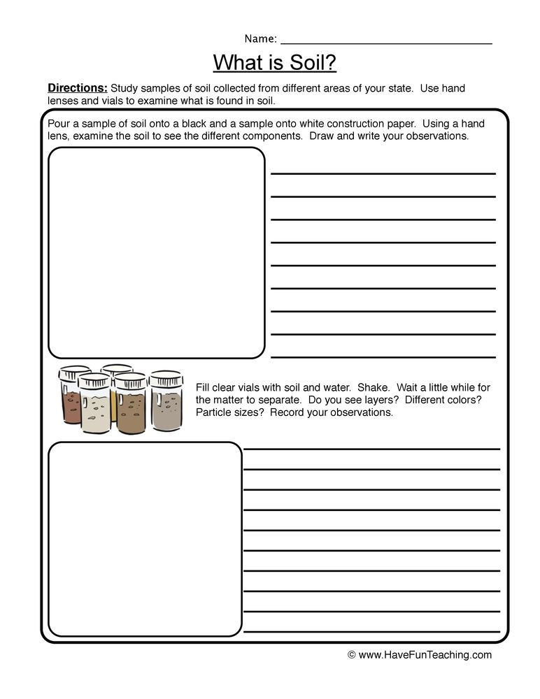 Soil Worksheet
