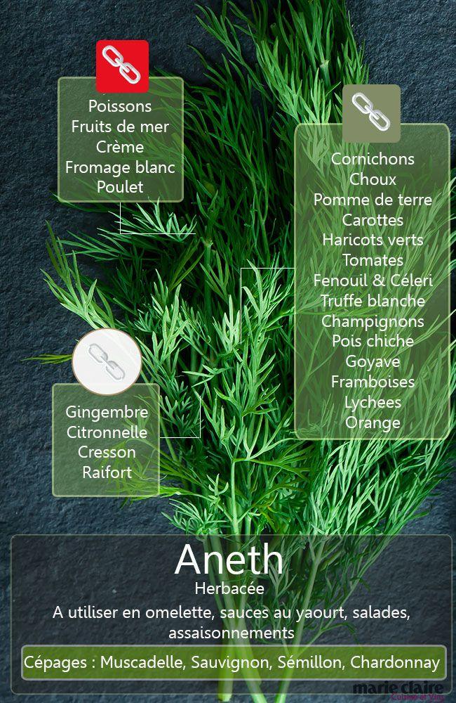 comment utiliser l'aneth en cuisine