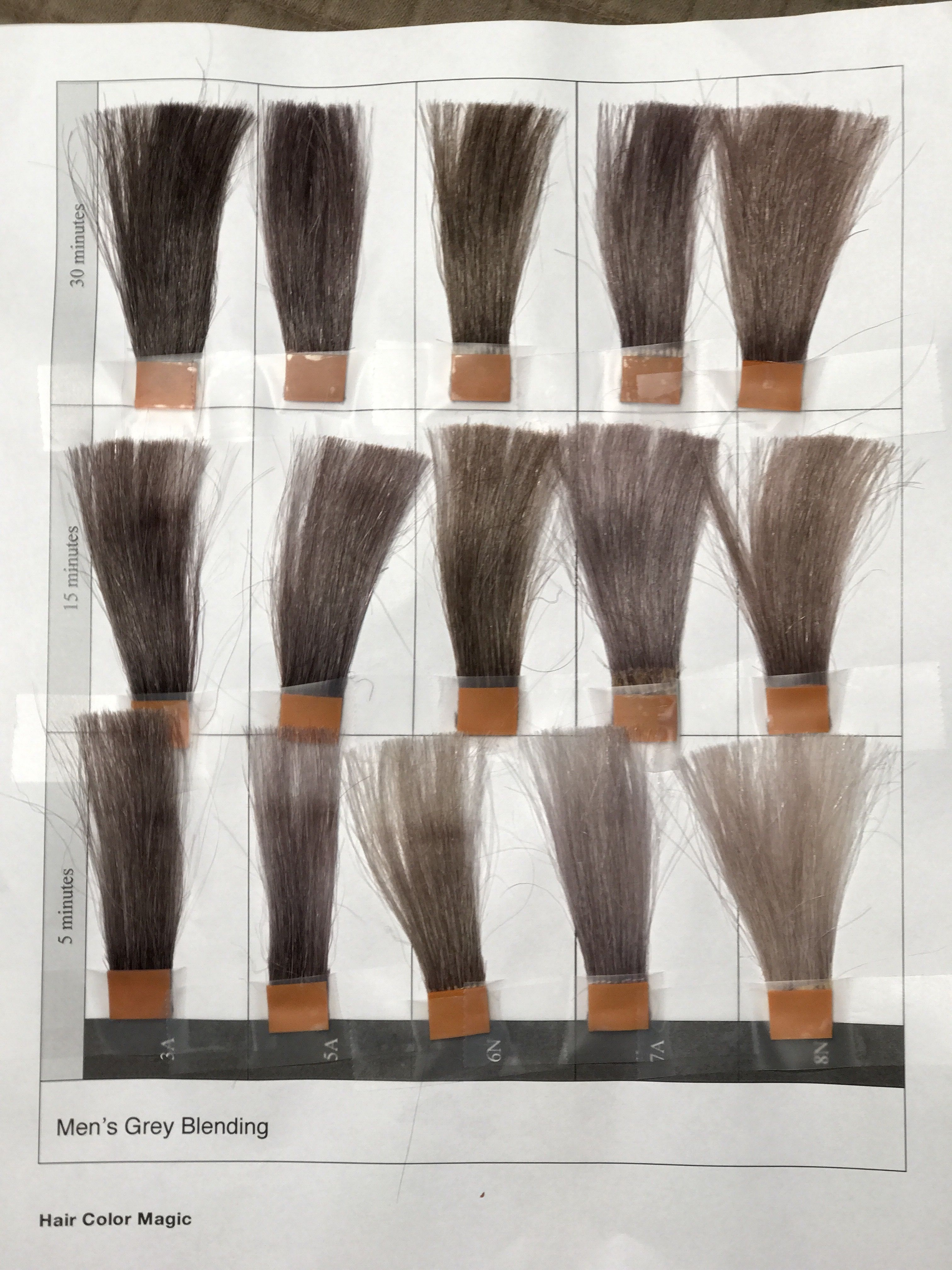 Men's Grey Blending Timing -5 minutes15 minutes30 minutesFrom the New True2Tone HCM class!Great Shadow Root,Make those blondes and Brunettes smokey!!#avedacolor #avedaartist  #neverstoplearning #ha...