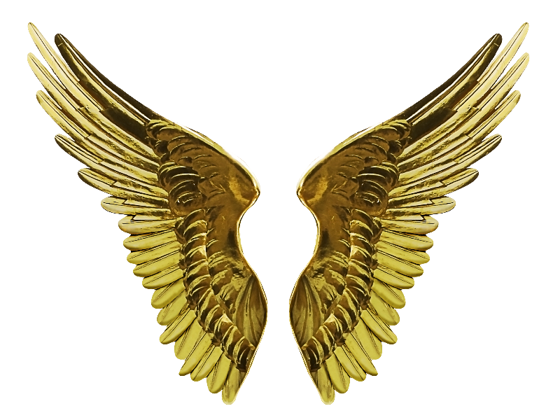 Gold Textures For Photoshop Wings Png Angel Wings Png Gold Angel Wings