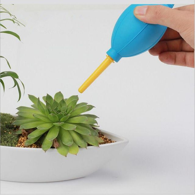 Micro Pot Plant Decoration Tool Air Blow Landscape Bonsai Plant