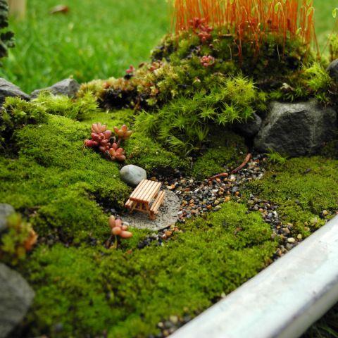 Miniature Moss Gardening With Images Moss Garden Miniature