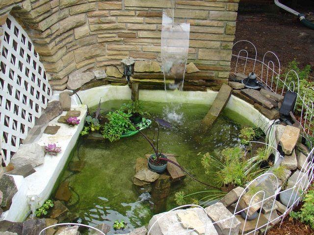 gartenteich standort tipps pflanzen zaun springbrunnen Es gibt viele