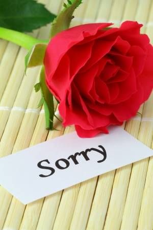 Sorry note with red rose