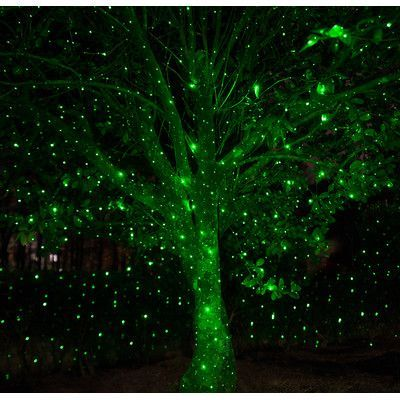 Wintergreen Lighting Static Laser Projector Color Green