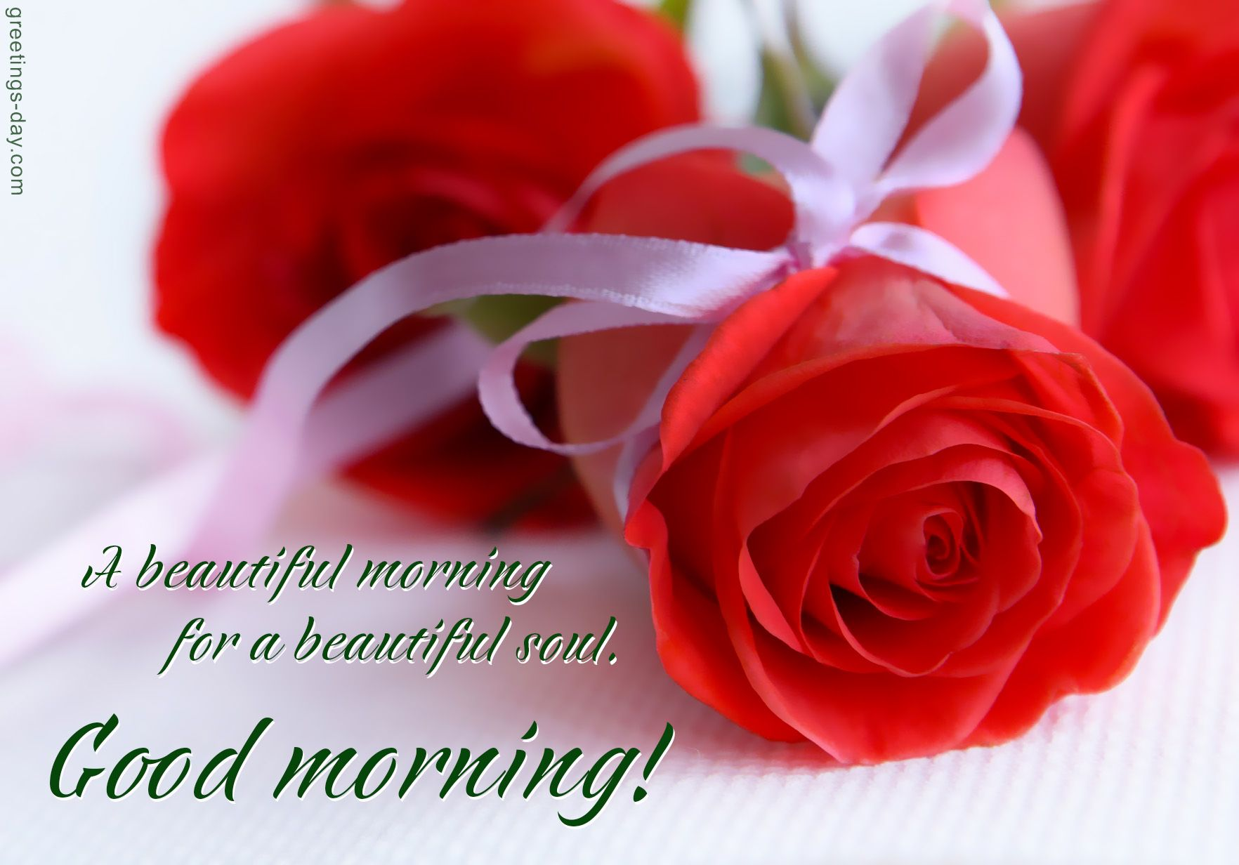 Pin by lina ares on good morning pictures pinterest morning pictures a beautiful morning for a beautiful souleetings wishes messages in images for sharing on social networks for loved ones friends izmirmasajfo