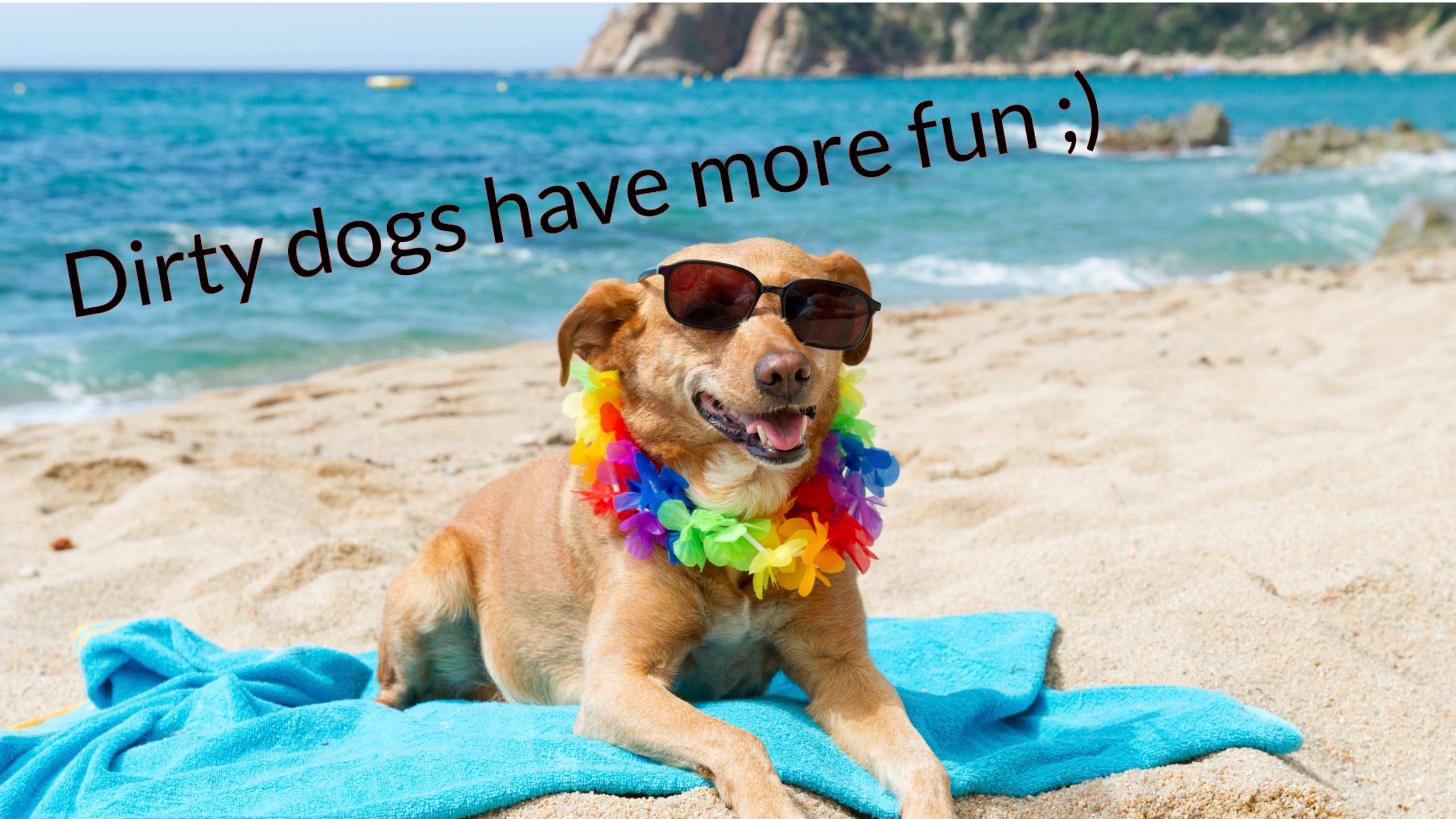 Funny Dogs Happy Dogs Stylish Dogs Funny Dog Names