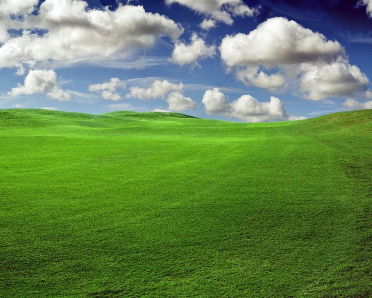Wallpapers Windows Xp Professional Aurora X Download