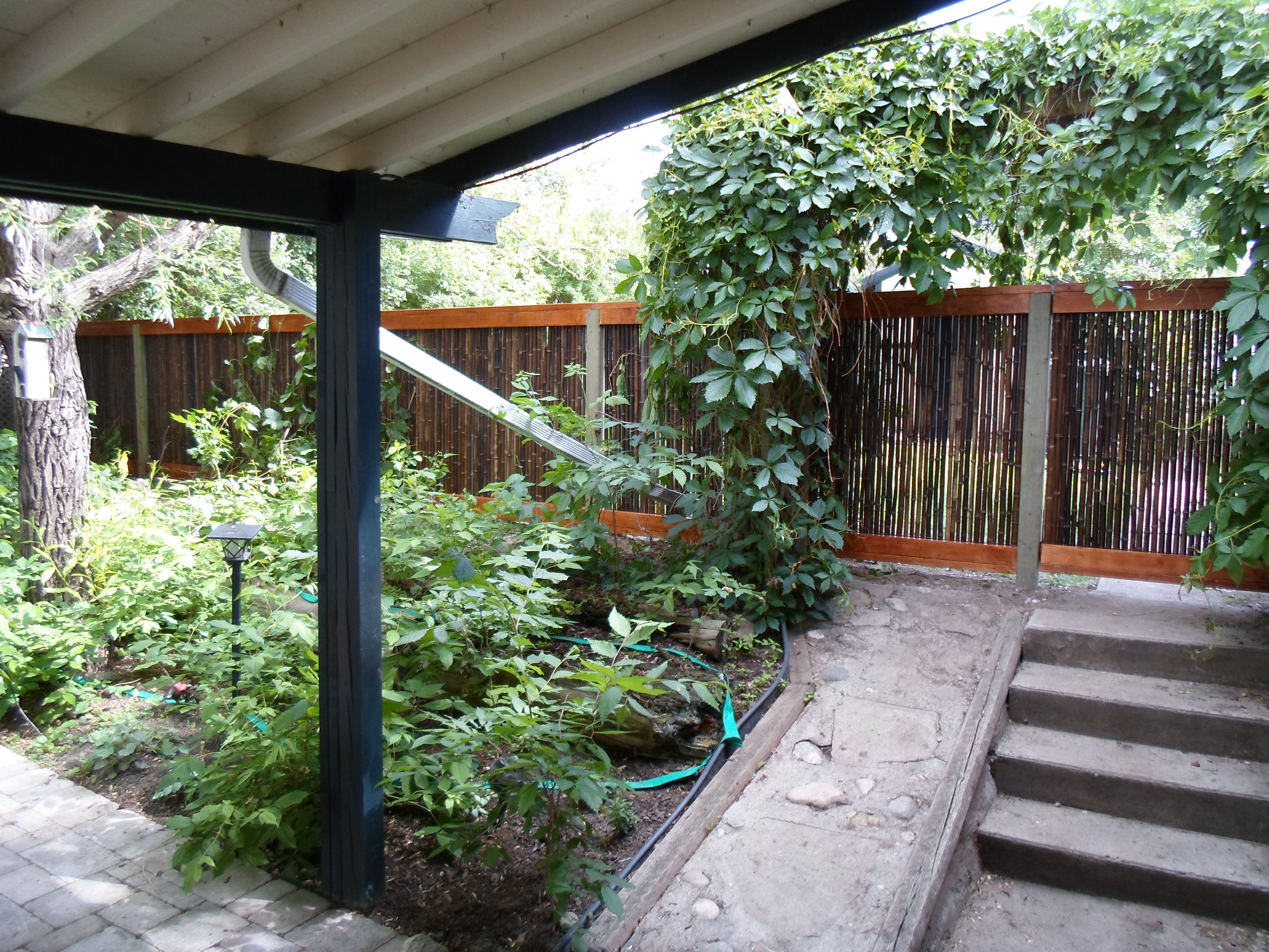 18 best bamboo fencing images on pinterest bamboo fencing