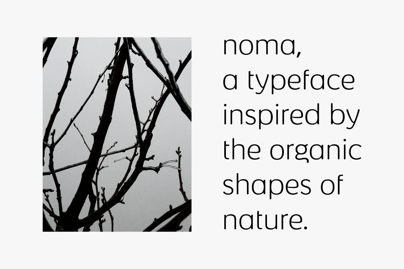 Noma   Kontrapunkt - Flawless Typography