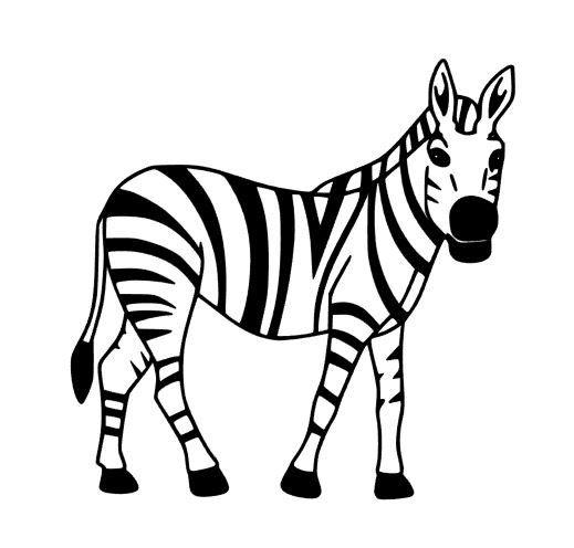 Zebra Cut File - Instant Download - SVG Vector JPG for Cameo