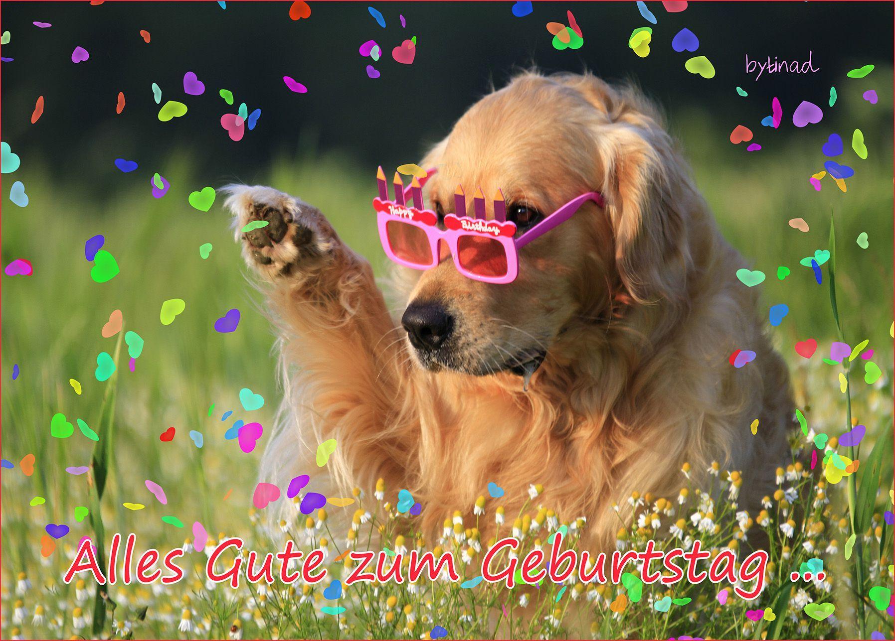 Tags Geburtstagswunsche Alles Gute Geburtstag Und Alles Gute