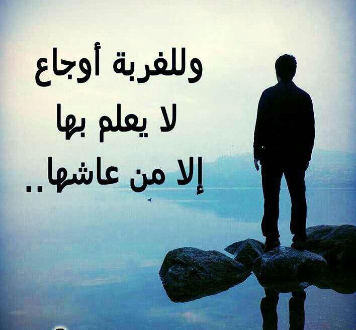 Pin By Noureddine On امثال وعبر Movie Quotes Funny Funny Quotes Arabic Quotes