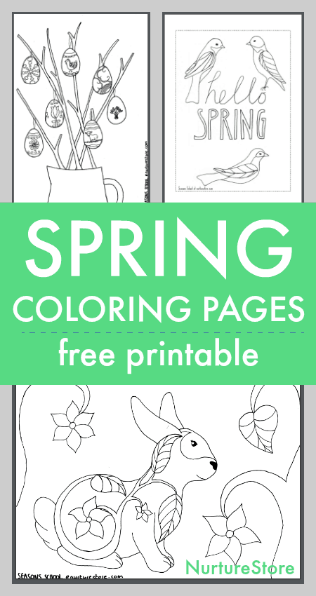 photograph regarding Spring Printable Activities known as Spring coloring sheets printables for young children