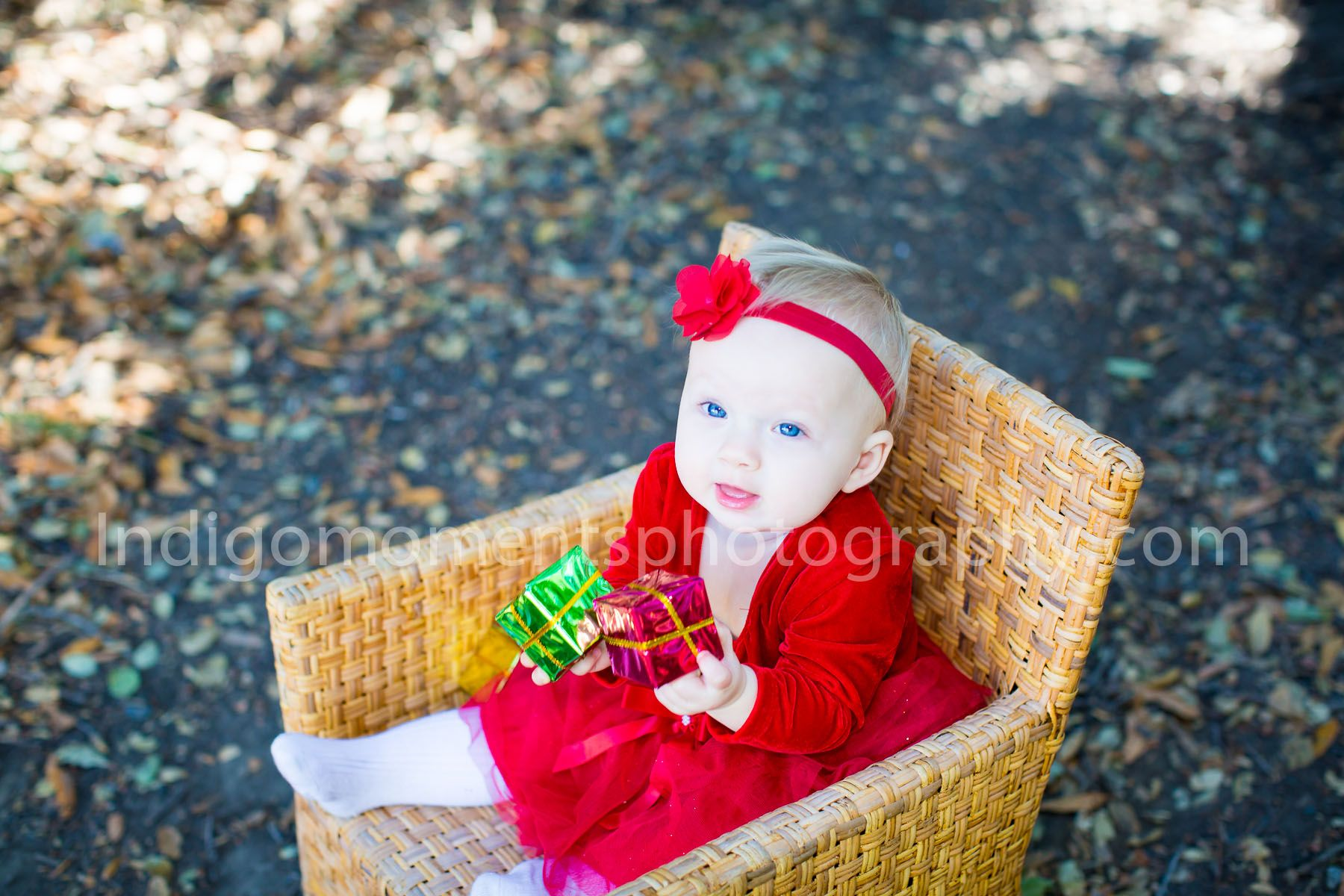 Christmas Holiday color schemes, fun family photos. Creating ...