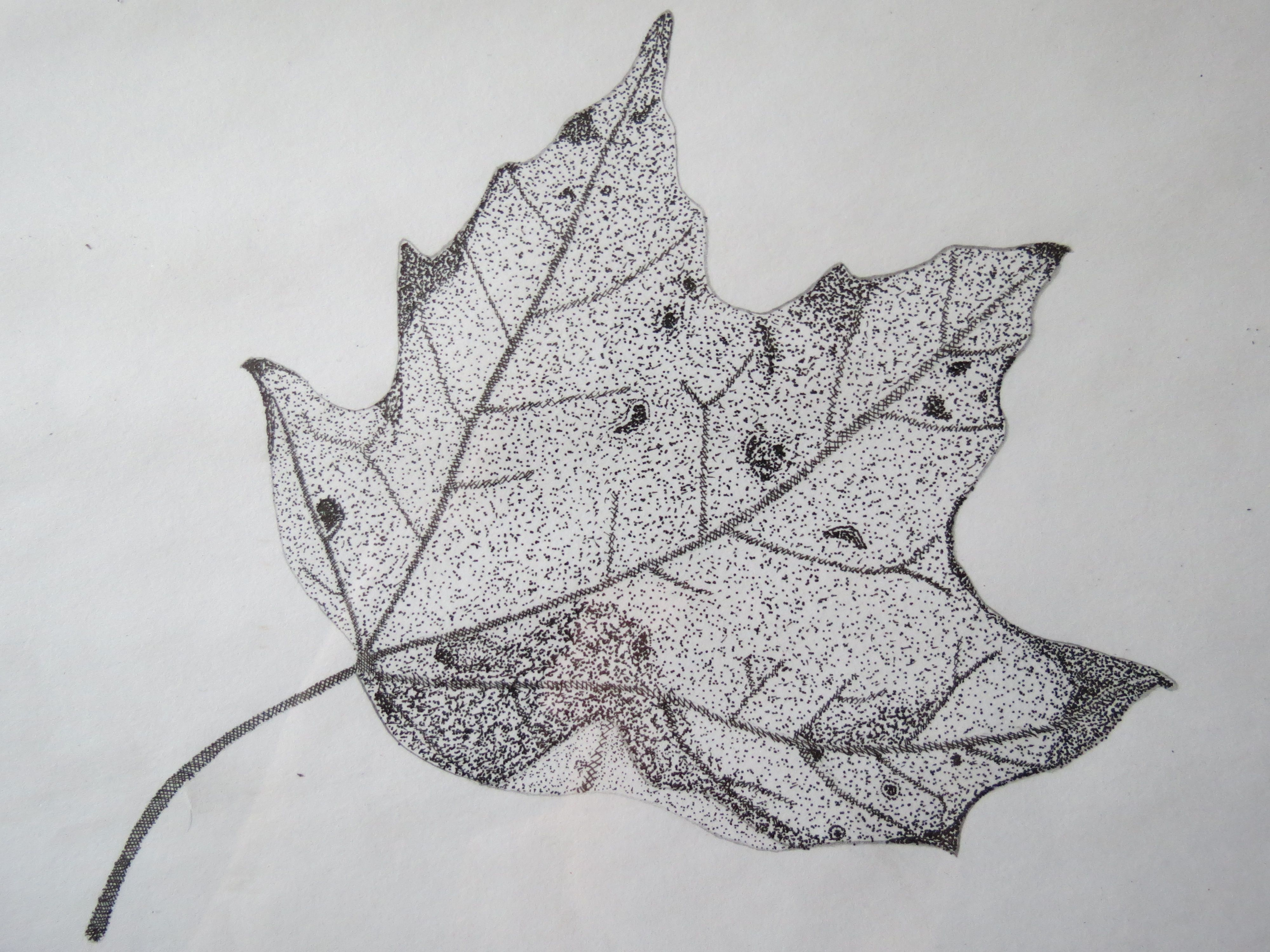 Drawing With Lines And Dots : This is the first pointillism all dots drawing i ever did! my
