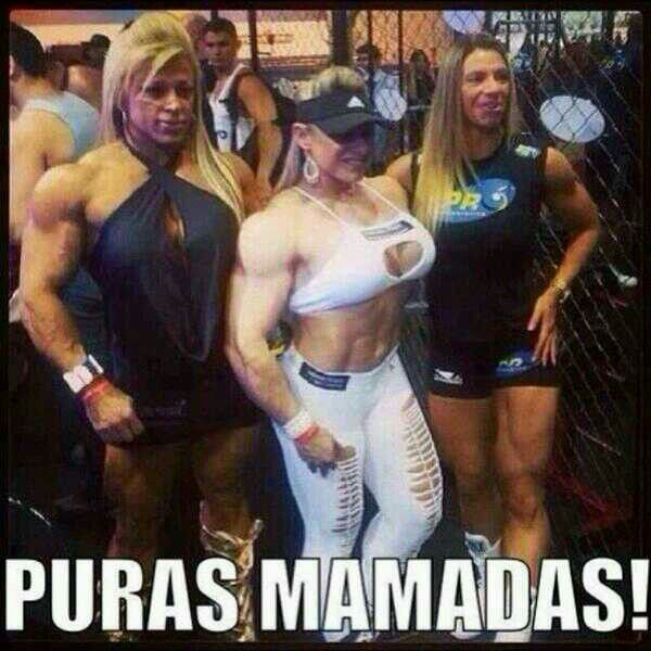 14edb807017c45f33c6c7abcbe8a1869 mamadas memes! pinterest memes, humor and mexican humor