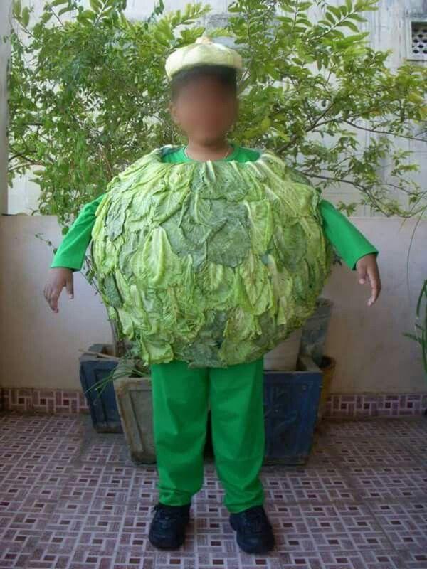 Cabbage Fancy Dress Competition Fancy Dress Fancy