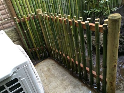 Bamboo Fence Fences Pinterest Bamboo Fence Bamboo And Fence