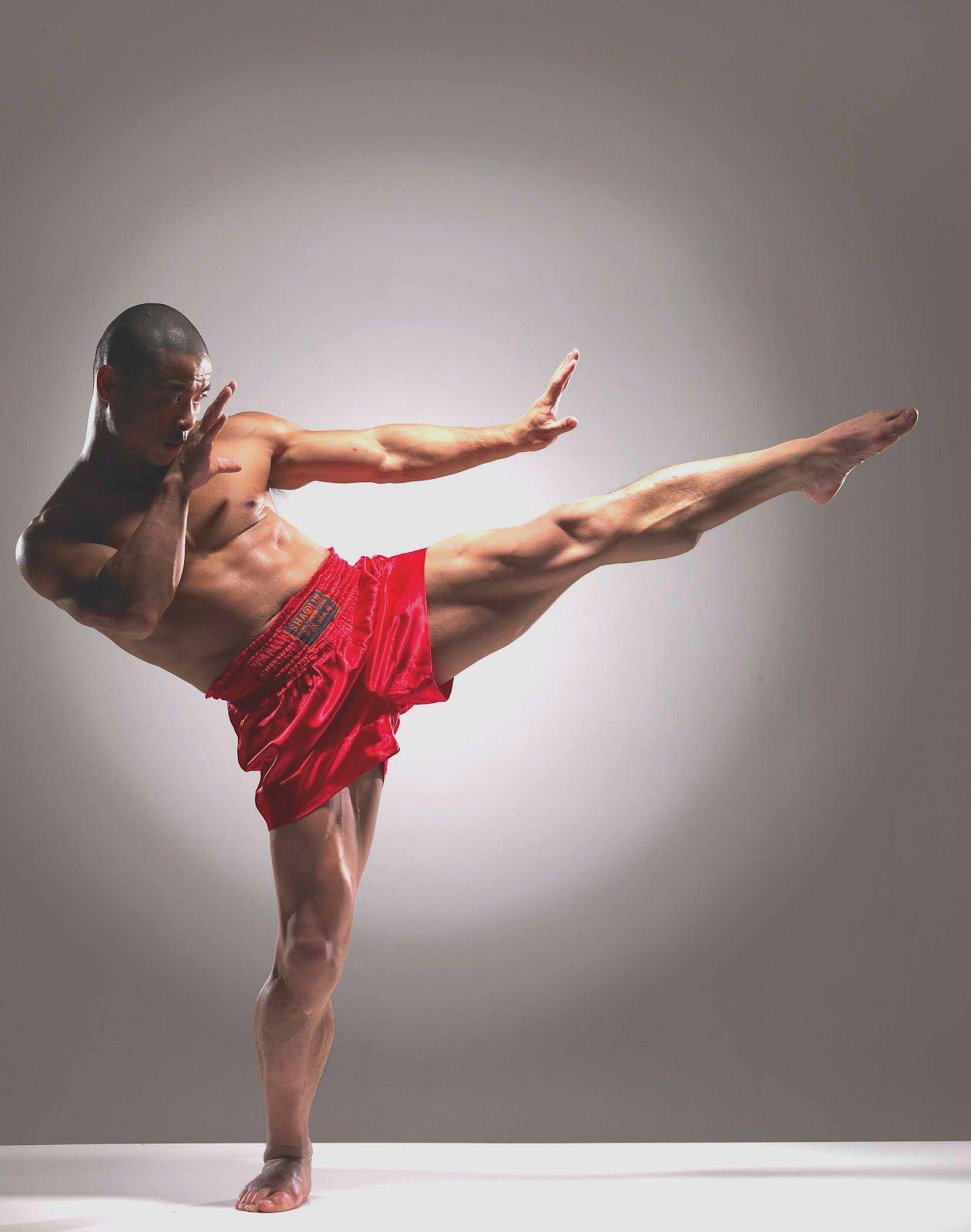 Shifu Yan Lei Your Authentic Shaolin Advisor Fighting Poses Human Poses Anatomy Poses