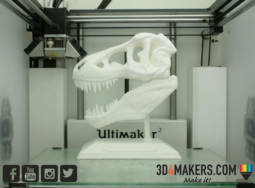 Something we liked from Instagram! And here is the full T-Rex skull printed with the 3D4Makers PLA white filament!  www.3d4makers.com #3dprinting #dinosaur #ultimaker #3d4makers #trex #3d #3dprint #3dprinted #thingiverse #3dprinter by 3d4makers check us out: http://bit.ly/1KyLetq