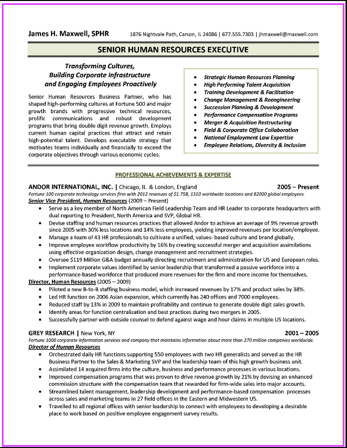 Executive Format Resume Examples Resume Cv