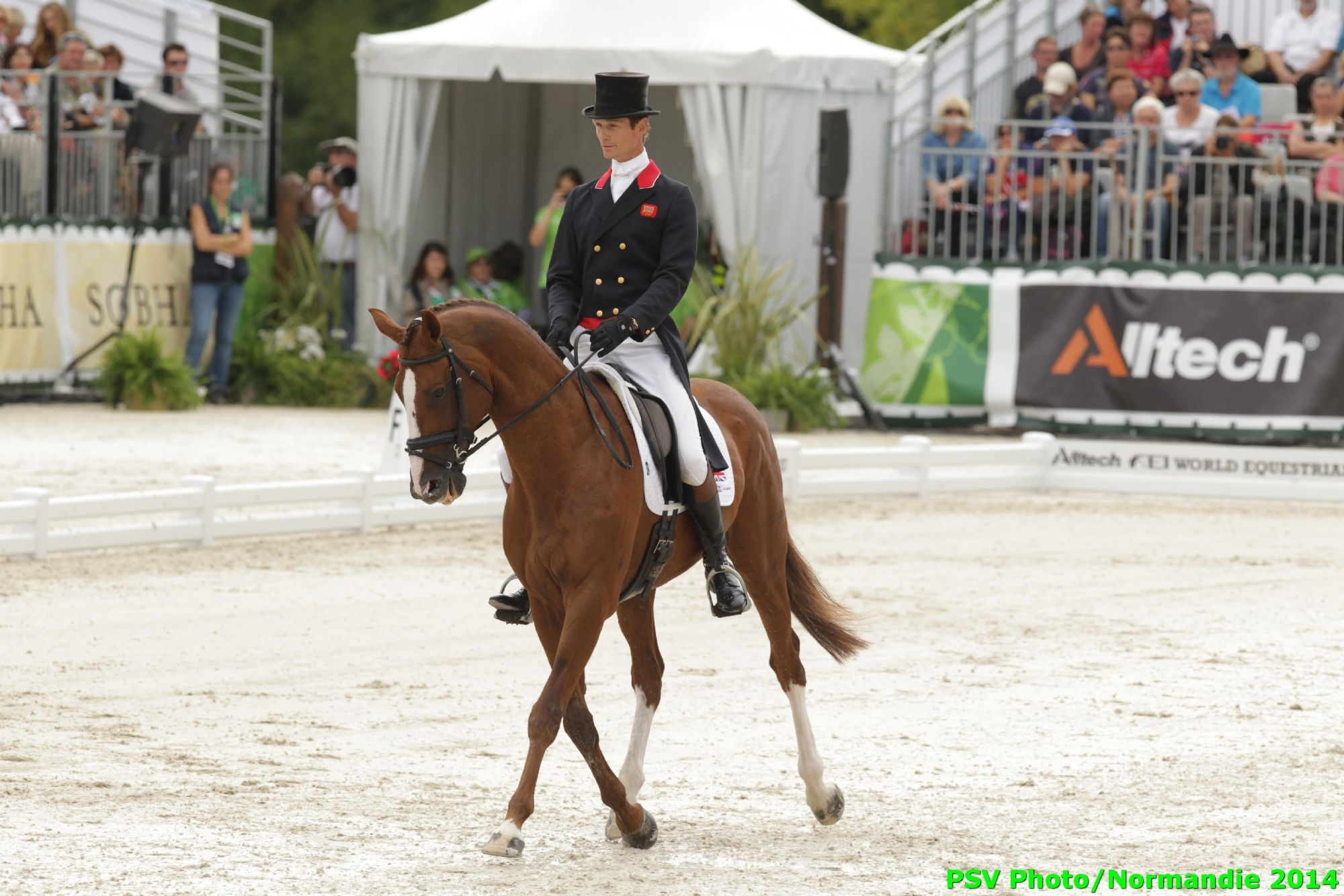 CCE Dressage - William Fox-Pitt - Chilli Morning - GBR - August 28th - Copyright : PSV Photo