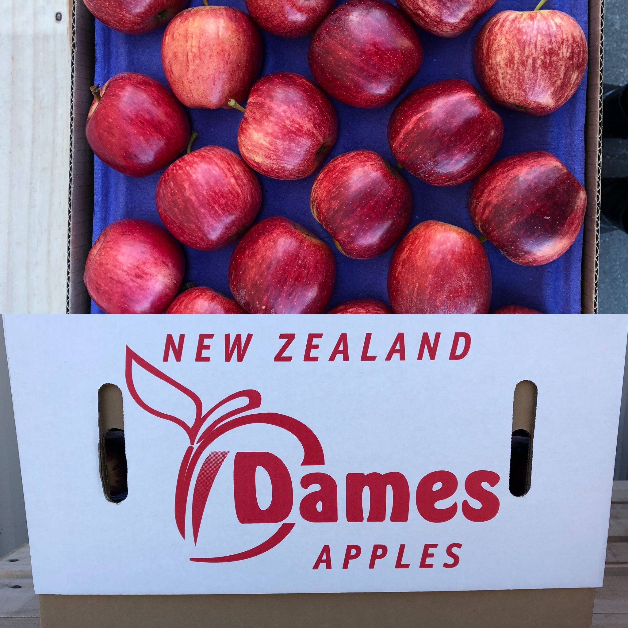 These Crunchy Juicy Delicious Hawke S Bay New Zealand Gala Apples Destined For India We Are So Proud Of Our B Delicious Restaurant Gala Apples Stone Fruit