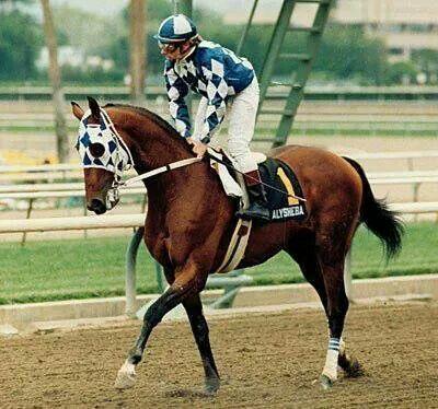 "Rachel Alexandra Zenyatta HOF horse racing print art  matted 11/"" x 14/"""