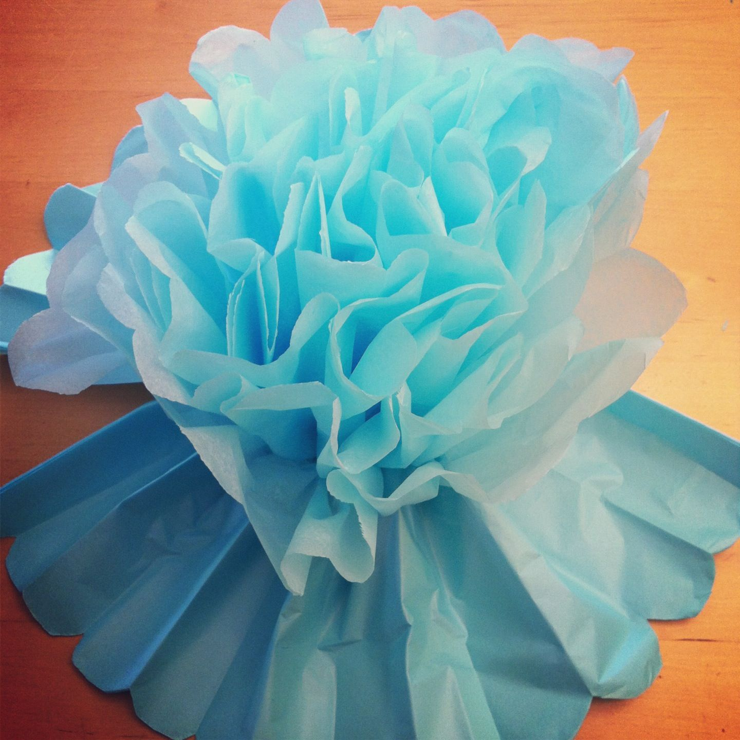 Tutorial How To Make Diy Giant Tissue Paper Flowers Tissue Paper