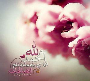 الحمد لله مزخرفة Noble Quran Ex Quotes Cool Words
