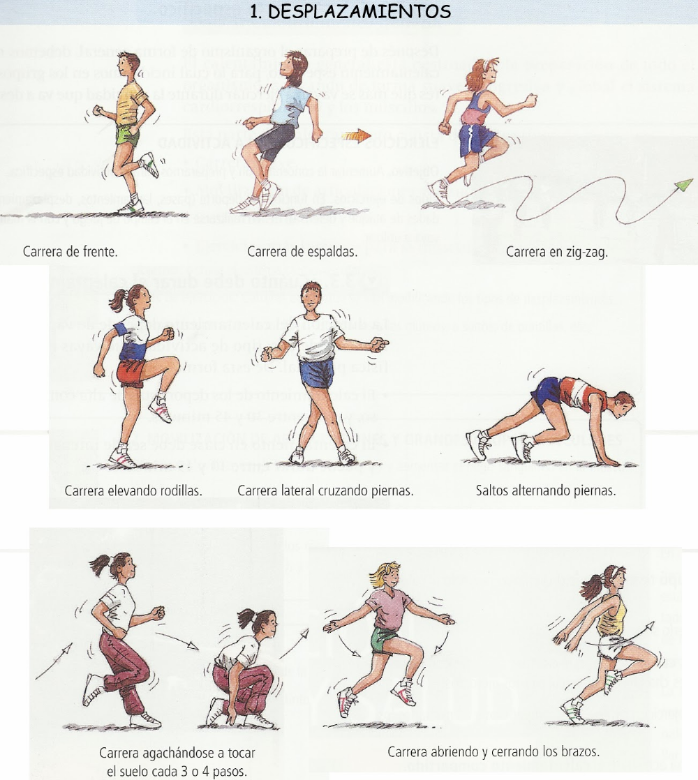 Desplazamientos Educación Física Para Infantil Y Primaria Trabajo Educacion Fisica Ejercicios De Educacion Fisica Actividades Educacion Fisica
