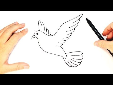 The Drawing Ideas Platform Has Thousand Creative Drawings And Paintings How To Draw A Pigeon Step By Step Dove Drawing Drawing Tutorial Bird Pencil Drawing
