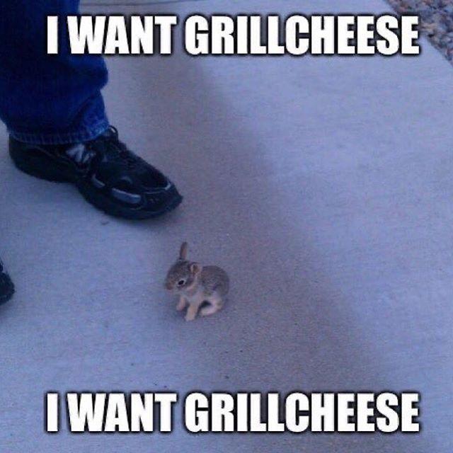 I Just Wanna Grill Meme