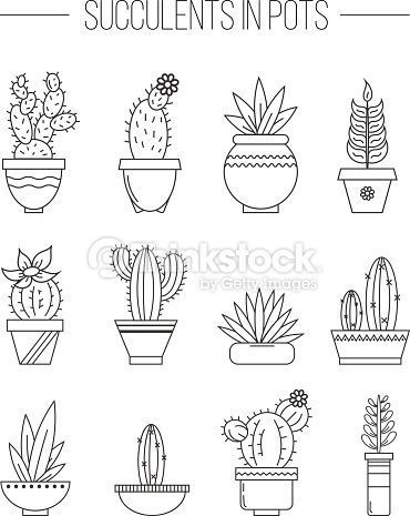 Set Of Succulent Plants And Cactuses In Pots Linear Botanical