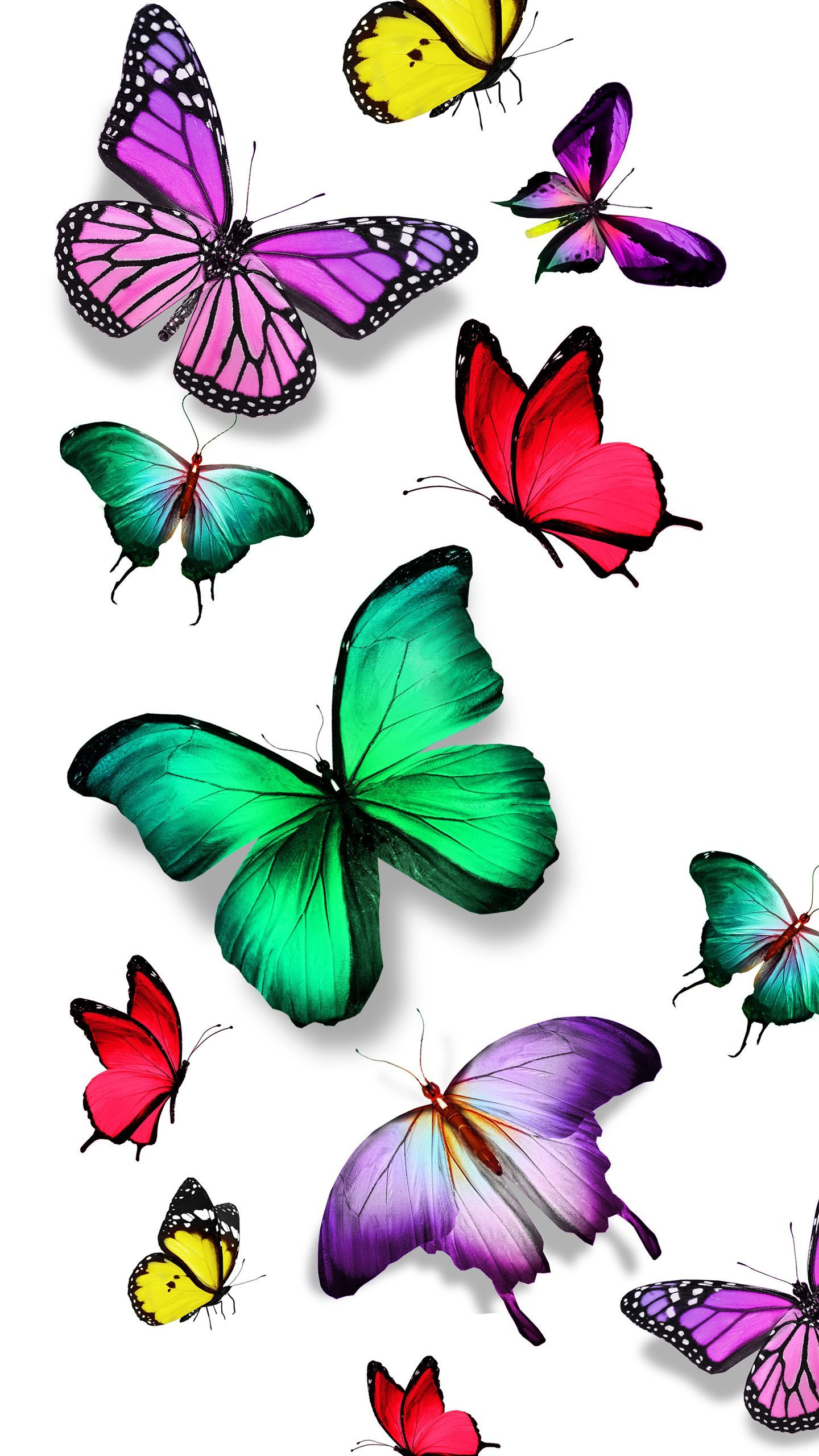 Butterfly Live Wallpaper http://wallpapers-and-backgrounds.net/butterfly-live-wallpaper