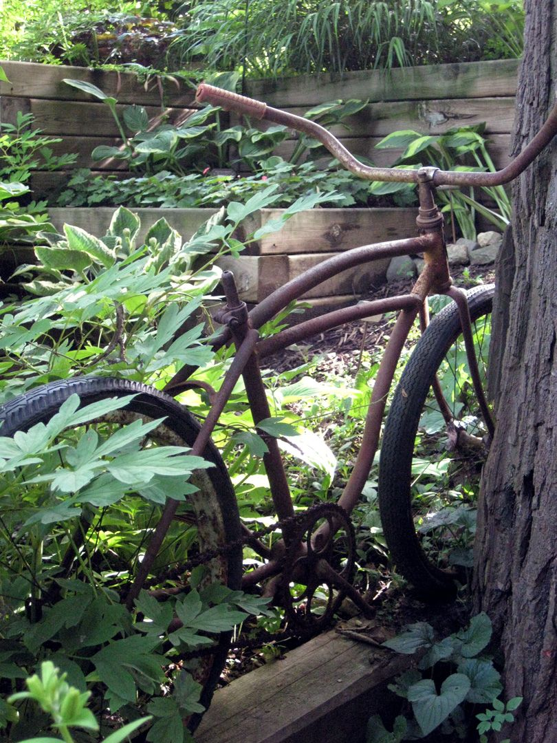 Bicycles in the garden