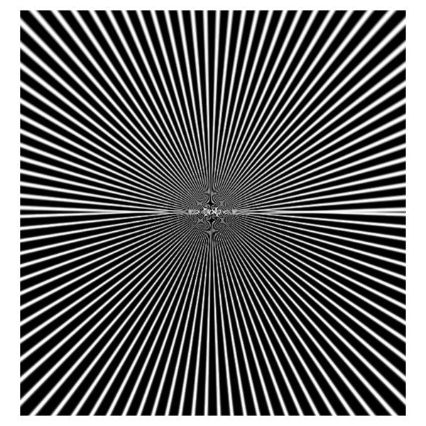optical illusion I really love this one