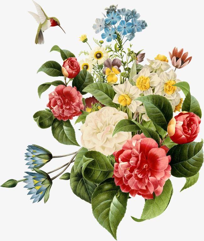 Flower Digital Flowers Botanical Flowers Watercolor Flowers
