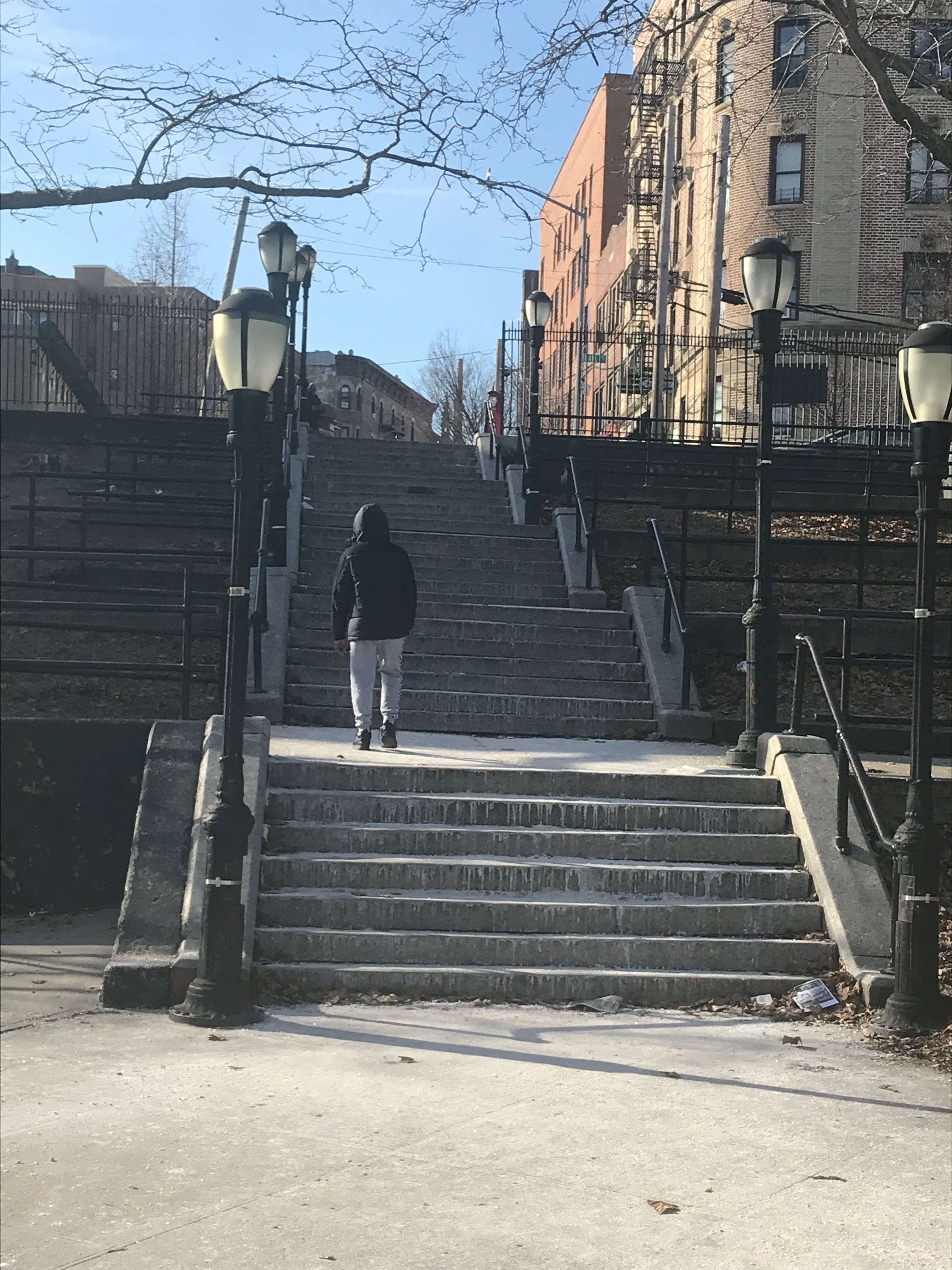 Famous Steps Of Bronx Ny Nyc Photography Nyc