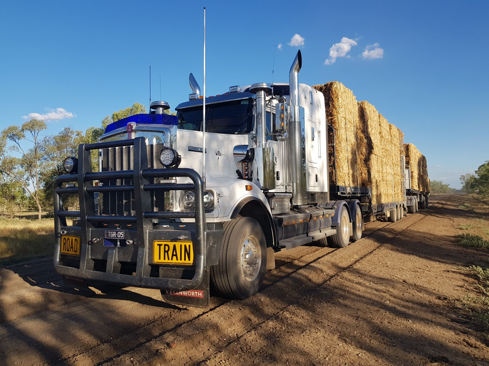 TGR Transport C509 With Carpentaria Bullbar