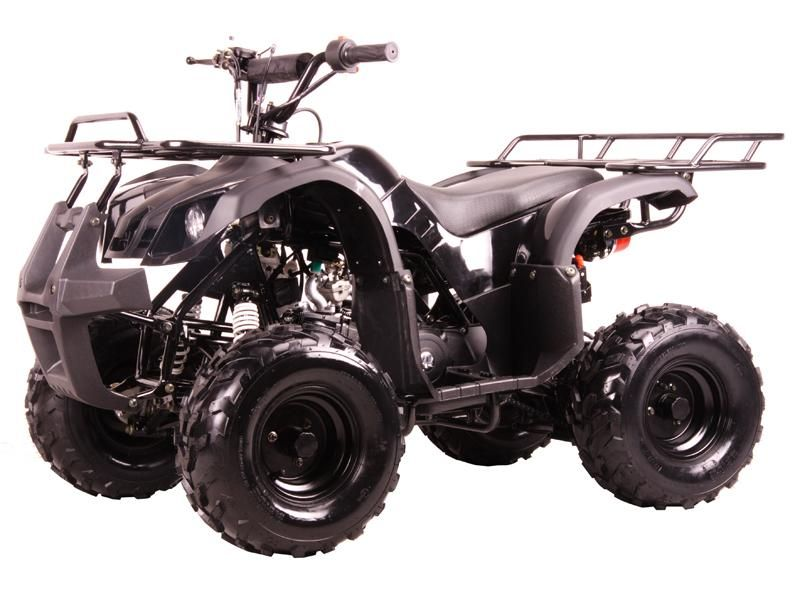 Yamaha Grizzly Clone, Automatic Transmission without