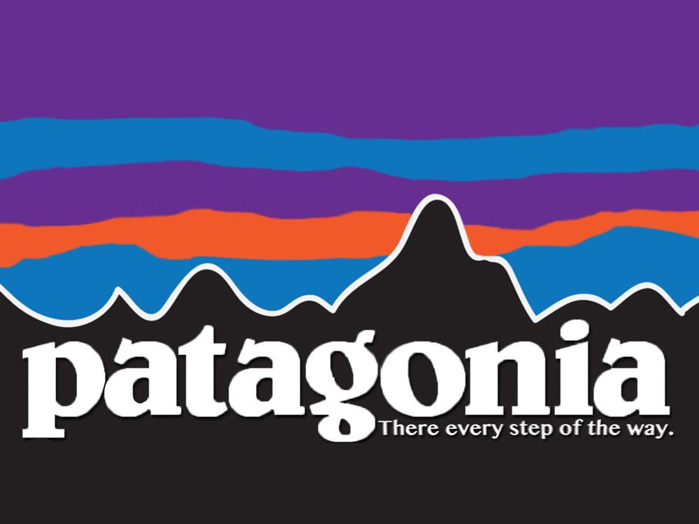 Image result for patagonia logo